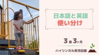 3歳3ヶ月バイリンガル育児記録
